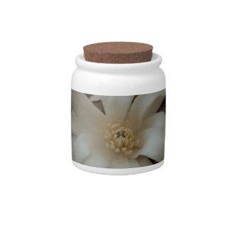 Snowball Magnolia Candy Dish