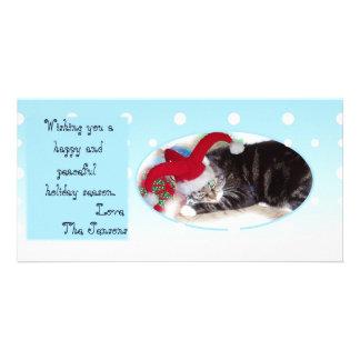 Snowball pet holiday card photo cards