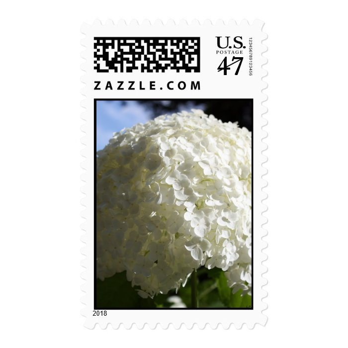 snowball vertical postage