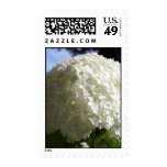 snowball vertical postage stamps