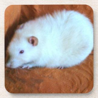 Snowball White Rat Cork Coaster