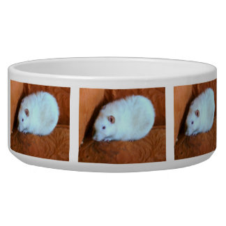 Snowball White Rat Dog Bowl