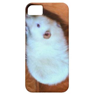Snowball White Rat iPhone 5 Case