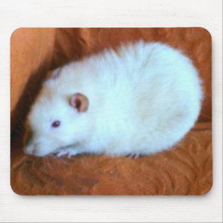 Snowball White Rat Mousepad