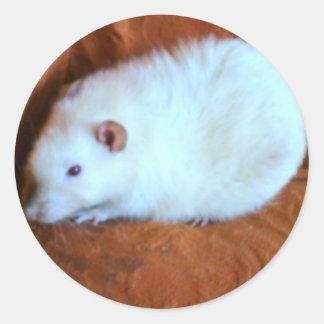 Snowball White Rat Sticker