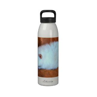 Snowball White Rat Water Bottle