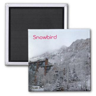 Snowbird Magnet