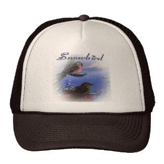 Snowbird violet hat