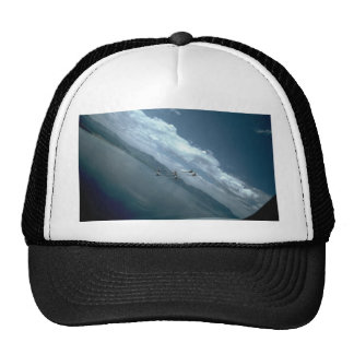 Snowbirds, View From Air, Rear Mesh Hat