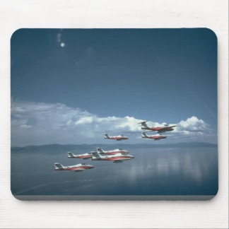 Snowbirds, View From Air, Right Side Mouse Pad