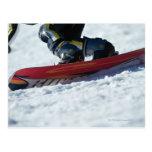 Snowboard 4 postal