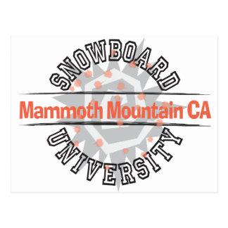 Snowboard University - Mammoth Mounain CA Post Card