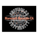 Snowboard University - Mammoth Mounain CA Postcard
