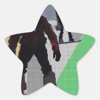 SNOWBOARDING STAR STICKER