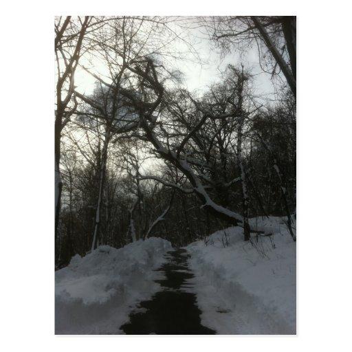 Snowbrick Road Postcard