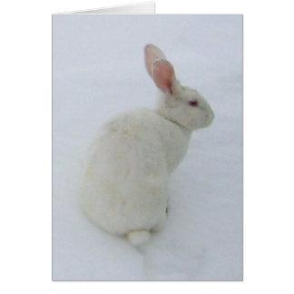 SnowBunny card