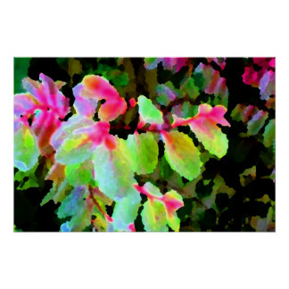 snowbush colorful plant abstract posters