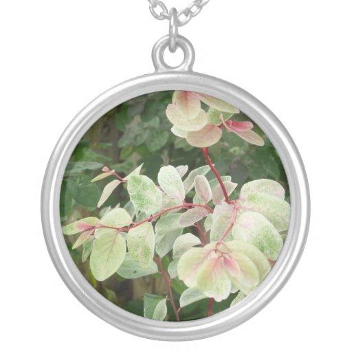 snowbush plant colorful leaves background round pendant necklace