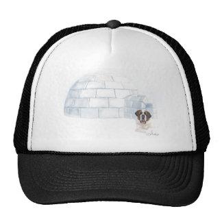 Snowcial Security Cap