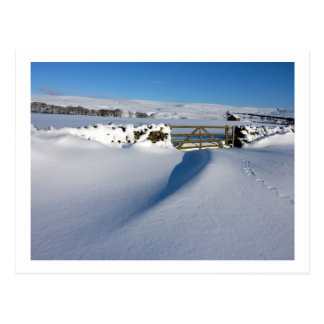 Snowdrift and Gate Post Cards