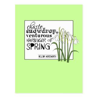 Snowdrop casto tarjeta postal