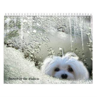 Snowdrop el calendario maltés