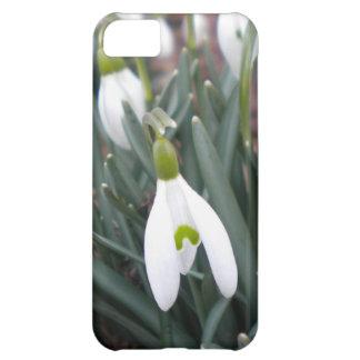 Snowdrop (Galanthus Nivalis) iPhone 5 case