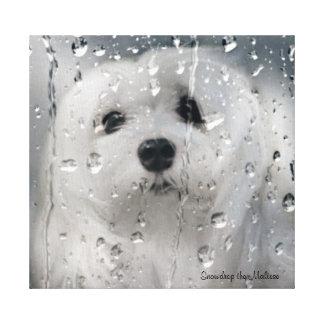 Snowdrop la impresión maltesa de la lona impresión en tela