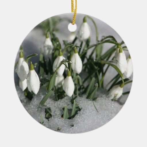 Snowdrop Ornamento Para Reyes Magos