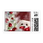 Snowdrop the Maltese Christmas Stamp