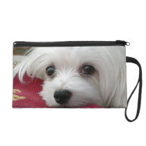 Snowdrop the Maltese Clutch Bag/Purse