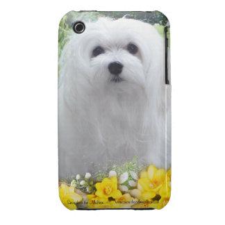 Snowdrop the Maltese iPhone Case