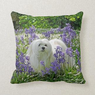 Snowdrop the Maltese Pillow/Cushion Throw Pillow