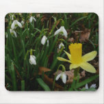 Snowdrops and Daffodil Early Spring Floral Mouse Pad