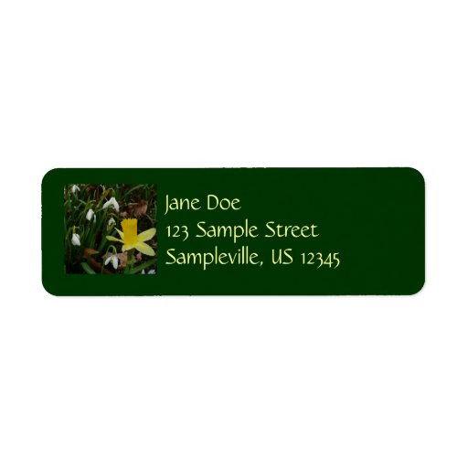Snowdrops and Early Daffodils Spring Flowers Return Address Label