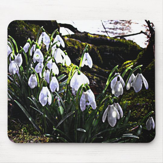 Snowdrops by River Hafren Mousemat Mouse Pad