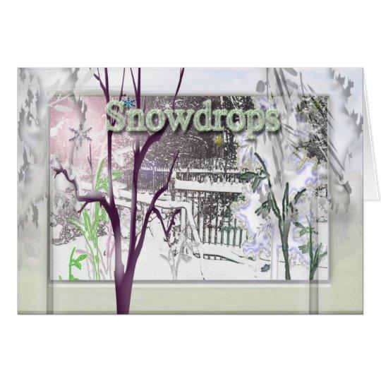snowdrops card