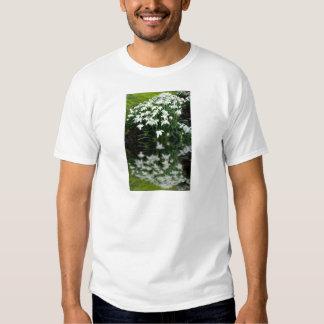 Snowdrops en la reflexión camisas