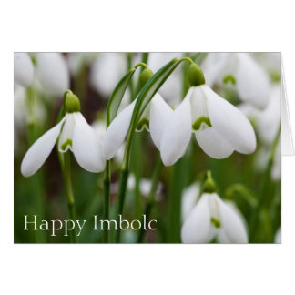 Snowdrops - Happy Imbolc Card