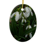 Snowdrops I (Galanthus) White Spring Flowers Ceramic Ornament