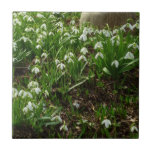 Snowdrops II (Galanthus) White Spring Flowers Ceramic Tile
