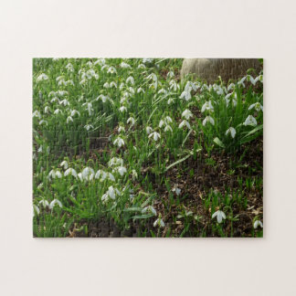 Snowdrops II (Galanthus) White Spring Flowers Jigsaw Puzzle