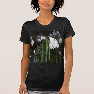 Snowdrops In The Garden T-shirts