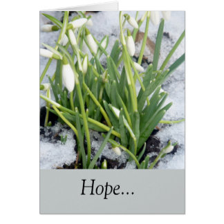 Snowdrops In The Snow Card