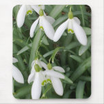 Snowdrops Mousepad