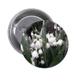 Snowdrops Pinback Buttons