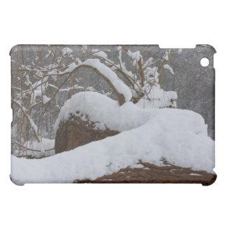 snowed tree branch iPad mini case