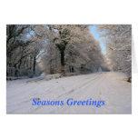 Snowfall Christmas Card