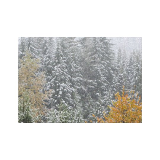 Snowfall in Whistler, B.C. Canvas Print