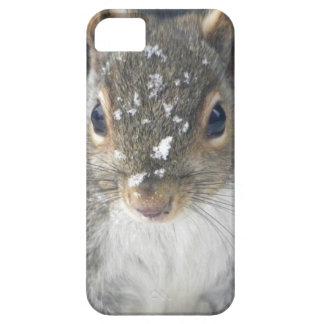 Snowfall iPhone Case